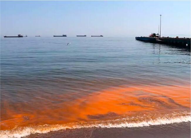 تحول بحر مرمرة  إلى اللون البرتقالي