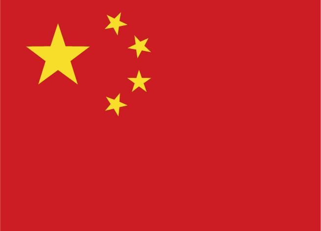 张先生 ( 中国 )