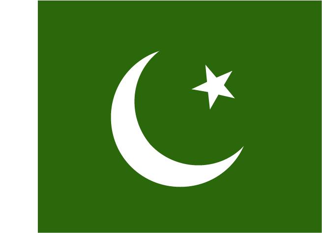 阿米尔·日 ( 巴基斯坦 )